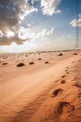 """على الدرب التقينا (Abdulaziz Alsaad """"Thadiqe"""") Tags: 2002 gmc وداع خطوات رحيل طعوس الرحيل طعس جمس نفود ثادق الساحبة"""