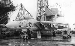 159426 Grumman F-14A Tomcat VF-32 AB214 (eLaReF) Tags: jfk cv67 cva67 cvan67 firthofforth 159426 grumman f14a tomcat vf32 ab214 bw black white airplane aeroplane johnfkennedy john f kennedy aircraft carrier navy usn aviation naval navalaviation f14
