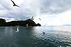 冬の伊根湾-06 (Naoki Harada) Tags: 京都 5d 海 1224mm 鳥 船 かもめ markiii カモメ 広角 舟屋 伊根 伊根湾 超広角 5diii