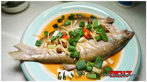 午魚06.jpg
