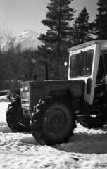 Marche,Italy (alex zarfati 1999) Tags: sole neve inverno lavoro agricolo agricoltura bw italy italian kodak film pellicola marche canon a1