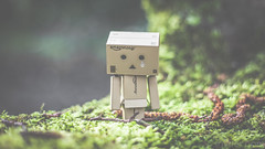 Tearful (#Weybridge Photographer) Tags: adobe lightroom canon eos dslr slr mk ii mkii danbo danboard kiyohiko azuma manga cardboard box amazon robot character figure tear tearful cry crying dof