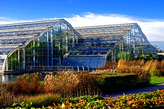 D11936.  The Glasshouse at The Royal Horticultural Society Gardens at Wisley in Surrey. (Ron Fisher) Tags: rhs gardens wisley surrey greenhouse england uk unitedkingdom gb greatbritain europe pentax pentaxkx royalhorticulturalsociety glasshouse october oktober autumn fall herbst auntumn