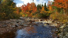Autumn Colors over Mary Ann River (TheNovaScotian1991) Tags: maryannriver autumncolors autumn autumnfoliage fallcolors fall capebretonhighlands capebretonisland novascotia canada beautiful colorful samsunggalaxys6edge smartphone cameraphone water reflection trees forest woods rocks boulders