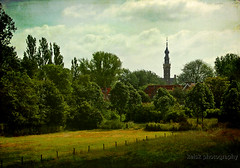 Veere from a distance (kelsk) Tags: trees holland bomen view cityhall nederland thenetherlands meadow zeeland stadhuis textured weiland veere textuur kelskphotography