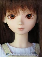 Lynette (reynardinesza) Tags: girl bjd emilie lynette bluefairy tinyfairy
