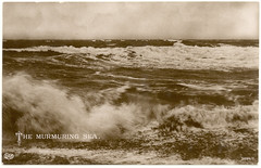 The Murmuring Sea- real photo postcard (Rescued by Rover) Tags: sea sepia postcard rough cp postale carte murmuring