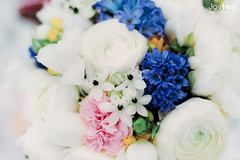 "Wonderful Wedding Flowers • <a style=""font-size:0.8em;"" href=""https://www.flickr.com/photos/41772031@N08/9261265230/"" target=""_blank"">View on Flickr</a>"