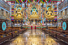 The Golden Temple | Bylakuppe (dinesh.I) Tags: travel tibetans colors temple nikon south monk buddhism karnataka goldentemple southindia d800 cwc travelindia bylakuppe monasteries travelphotography incredibleindia buddhistmonastery chennaiweekendclickers dineshi nikon1635mmvr dineshbabui din3shphotography dineshphotography dineshiphotography thegoldentemple|bylakuppe