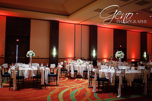 "Rent Chiavari Chairs in Iowa • <a style=""font-size:0.8em;"" href=""http://www.flickr.com/photos/81396050@N06/9525729576/"" target=""_blank"">View on Flickr</a>"