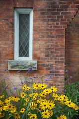 flowers at a church (lynn.h.armstrong) Tags: camera morning flowers red white ontario canada black brick green art church window leaves yellow lens photography photo aperture nikon long flickr sill photographer purple quebec wordpress south bricks cement blogger images diagonal lynn livejournal h getty wakefield nik nikkor armstrong stormont facebook sault ingleside twitter tumblr d7000 lynnharmstrong pinterest