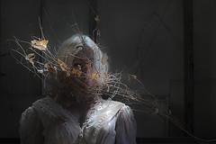 Growth (Elise Weber) Tags: life light portrait alex sarah self death vines branches surreal growth ann timeless stoddard loreth