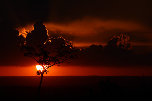 Sunset in the cerrado of Brazil