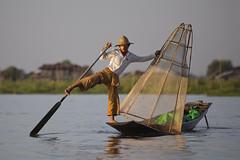 One leg rower fisherman at the Inlay lake. (Bertrand Linet) Tags: water boats boat fishing fisherman asia southeastasia fishermen burma culture myanmar pecheur cultural pescador birmanie birmania vipveryimportantphotos bertrandlinet