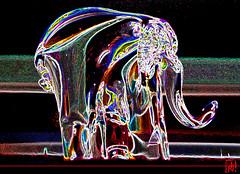 Un lphant qui aurait mang de l'herbe....a trompe normment ! (mamnic47 - Over 6 millions views.Thks!) Tags: sculpture elephant verre bibelot img8378 effetphotoshop effetsdelumires