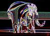 Un éléphant qui aurait mangé de l'herbe....ça trompe énormément ! (mamnic47 - Over 8 millions views.Thks!) Tags: sculpture elephant verre bibelot img8378 effetphotoshop effetsdelumières