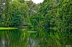 577) Kennett Square PA, Longwood Gardens - view towards Peirce's Woods across pond near Italian Water Garden [409] (Houckster) Tags: usa lake garden botanical pond woods pennsylvania pa longwoodgardens photostream 409 kennettsquare 2013 19348 hourglasslake peirceswoods houckster sonyslta77v sony182503563