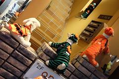 Yokohama Motomachi Halloween 2013 57 (HAMACHI!) Tags: street dog pet halloween japan evening costume twilight candy sweet dusk trickortreat fujifilm yokohama motomachi kanagawa f28 shoppingstreet xm1 27mm trickortreaters 2013 fujifilmxm1 xf27mm