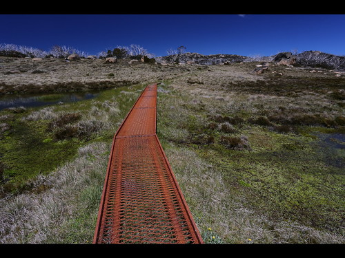 Rust Road, Mount Buffalo 2013