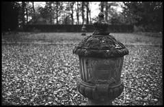 vase (ha*voc) Tags: bw film bokeh rangefinder 35mmfilm ilfordxp2super breukelen nijenrode nikoncoolscanv leicam5 voigtlandernokton35mmf14