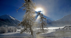 perfect winter (upsa-daisy) Tags: