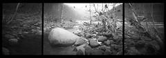 River Triptych # 2 (DRCPhoto) Tags: bw kodak pinhole westvirginia portra 141 cheatriver lenslessphotography realitysosubtle