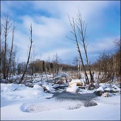 pechegda_jan_14_2 (4) (slavsja) Tags: winter sky film clouds river hasselblad provia100f 500cm epsonv700 yaroslavlregion pechegda