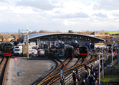 The Great Goodbye (Hawknose Harlequin) Tags: museum great railway national gathering goodbye a4 the shildon gresley