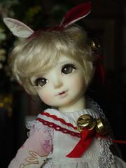 HikariCustom House-Fairy Raphael (Honey Secret) Tags: fairy bjd raphael limited ai petite customhouse