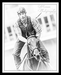 Mine that bird (EASY GOER) Tags: horse sports canon saratoga racing athletes thoroughbred equine 400mm 50d kentuckyderbywinner