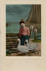 pc  volendam ganzen  1910 (janwillemsen) Tags: old postcard ganzen 1920 volendam