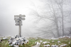 (Mimadeo) Tags: wood morning trees mist mountain tree nature wet sign rock misty fog stone mystery lost wooden haze rocks panel post display stones walk foggy hike direction directions arrow signpost choice hazy signboard orientation