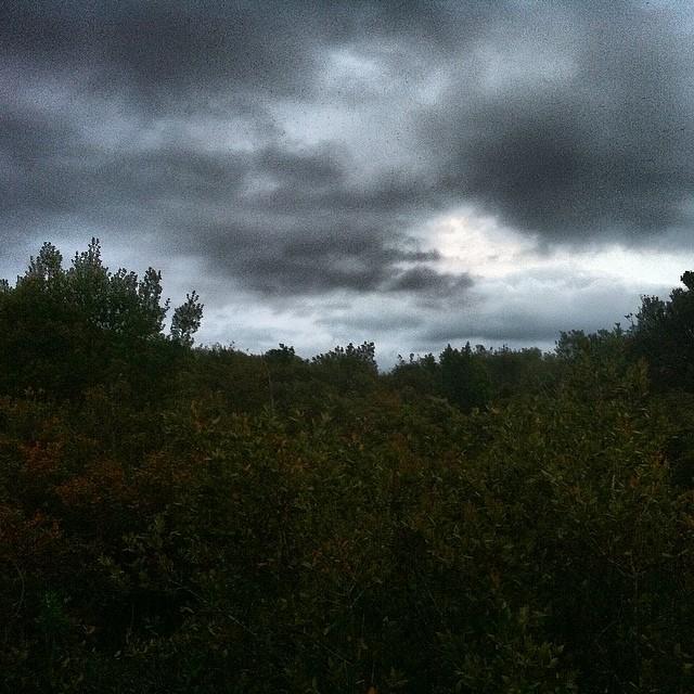 Verde grigio pioggia