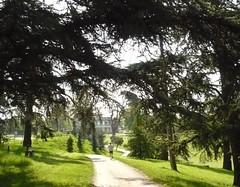 Au parc Palmer - Cenon