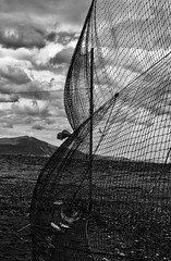 IMG_8807 (assi_del) Tags: sea blackandwhite net wind sky rainy windy sand clouds cloudy bnw noireetblanc eos 600d