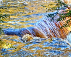 Brilliant Colors in the Sunlight at Tahquamenon Falls (PhotosToArtByMike) Tags: tahquamenonfalls lowerfalls michigan tahquamenonfallsstatepark mi tahquamenonriver upperpeninsulaofmichigan upperpeninsula up uppermichigan waterfall river tanninswater tannic cedarswamps forested forest newberrymichigan autumn autumnleaves