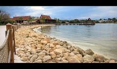 Polynesia (Scott Smith (SRisonS)) Tags: disneyspolynesian lakebuenavista resort beach florida magickingdom monorail waltdisneyworld wdw
