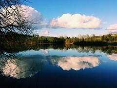 Reflections on Lac de Bosmeliac