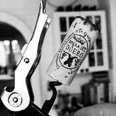 Day 018 - TGIF (Frank Reitz) Tags: wine riberadelduero tgif monochrome apicaday 365 iphone