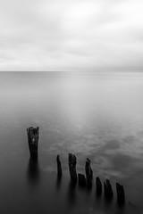 atlantic (eb78) Tags: ma massachusetts blackandwhite monochrome greyscale grayscale bw marthasvineyard longexposure atlanticocean decay oakbluffs newengland