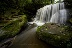 full flow 2 (neil aldred) Tags: water river flow leura green