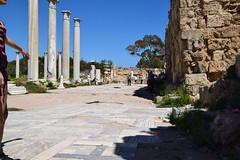 DSC_0255 (mark.greefhorst) Tags: cyprus northerncyprus salamis ancientworld roman