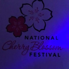 The National Cherry Blossom Festival in Washington DC invite instagram compression (RYANISLAND) Tags: thenationalcherryblossomfestival nationalcherryblossomfestival cherryblossomfestival cherryblossom cherryblossoms japan japanese washingtondc washington dc usa welcomespring spring flower flowers pink video hdvideo cameravideo phonevideo iphone iphonevideo cherryblossomfestivals cherry blossom blossoms 17 2017 sakuramatsuri sakura matsuri