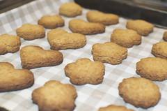 carrot cookies (keiko.com) Tags: nikon cookie sweet bokeh homemade carrot   gettyimages macrobiotics  35mmf18  d7000