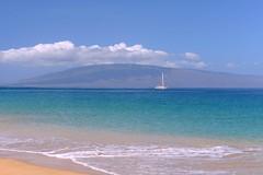 Colors of paradise (Natalia Lewis) Tags: beach colors hawaii colorful maui kaanapali