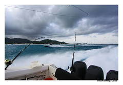 Billfish Tournament St Martin 2013 (ozantilles) Tags: sxm billfish tournament