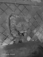 Biscionne 92 (Piazza del) - Ristorante Da Pancrazio B 03 (Fontaines de Rome) Tags: rome roma fountain brunnen fuente font piazza fountains fontana fontaine ristorante rom fuentes 92 bron fontane fontaines pancrazio biscione piazzadelbiscione piazzadelbiscione92 ristorantepancrazio
