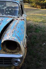 Westimeet August 2013 (kelliejane) Tags: old car sydney australia pickup ute rusted nsw yarramundi 2013 sydneysbackyard kelliejane westimeet hillbillyhipster