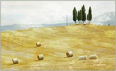 Dans le Val d'Orcia, Toscane (claude lina) Tags: tuscany pienza toscane italie bagnovignoni sanquiricodorcia creativemindsphotography valdorica