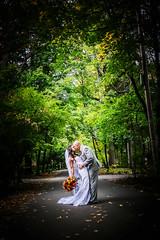 Samantha-Josh_1602 (Michael William Thomas) Tags: autumn wedding sun ny newyork tree fall photography michael photo buffalo photographer thomas w journal vio michaelthomas viovio